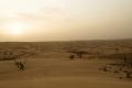 figura-24-le-prime-dune